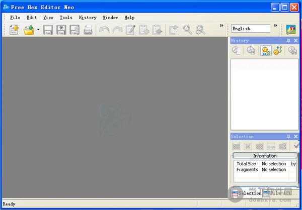Free Download ECU bin file dump editor Hex Editor
